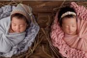 张雨绮有一对双胞胎孩子